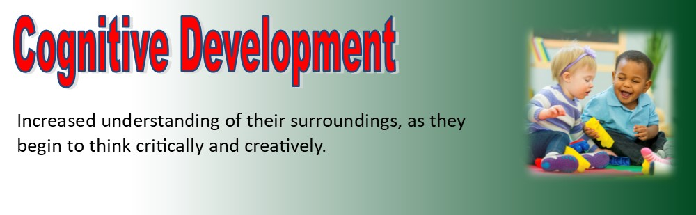 cognitive development banner
