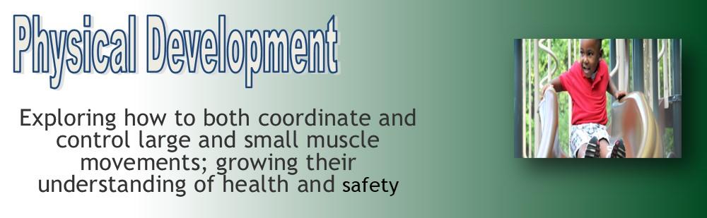 physical development TODDLER banner2