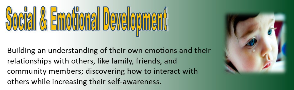 social emotional development banner1